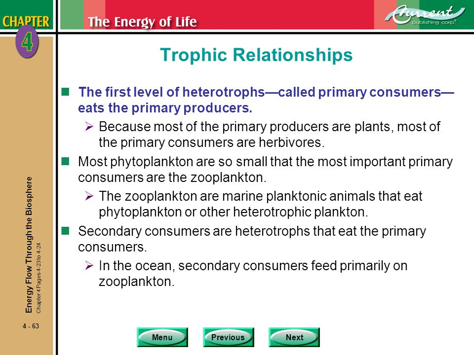 MenuPreviousNext 4 - 63 Trophic Relationships nThe first level of heterotrophs—called primary consumers— eats the primary producers.