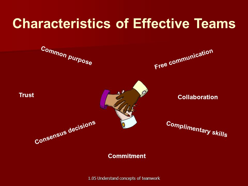 Characteristics of Effective Teams Common purpose Free communication Trust Collaboration Consensus decisions Complimentary skills Commitment 1.05 Understand concepts of teamwork
