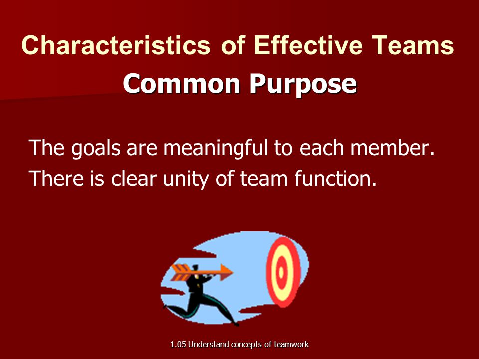Characteristics of Effective Teams Common Purpose The goals are meaningful to each member.