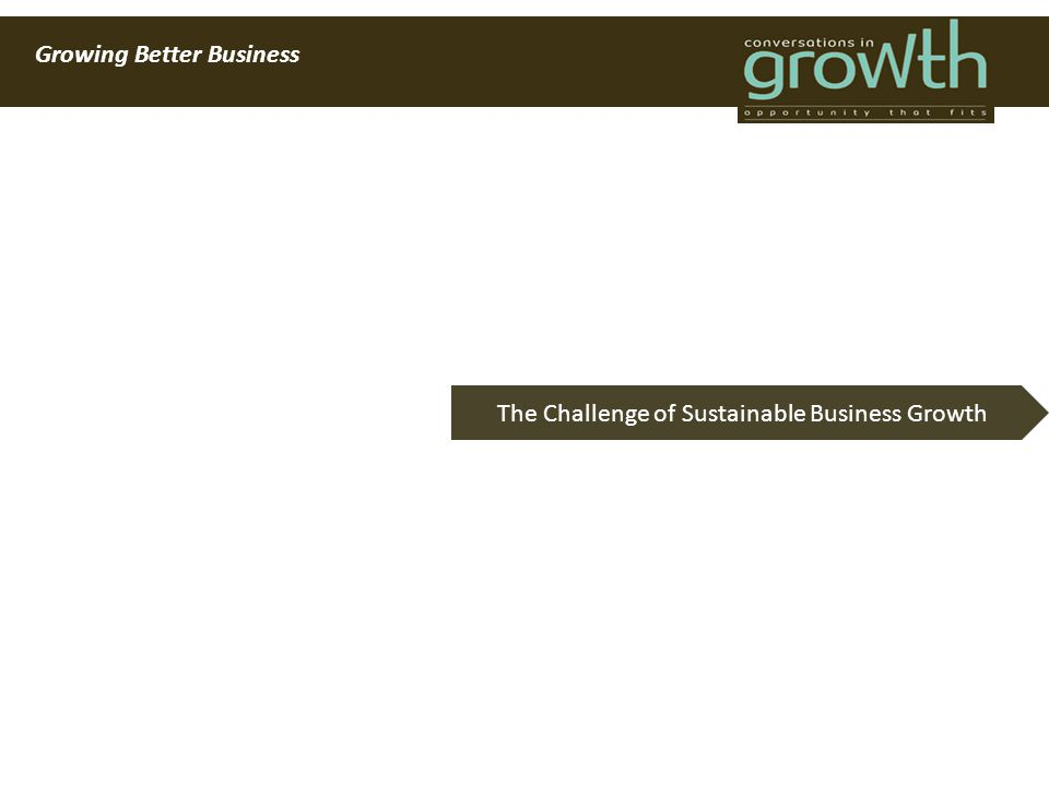 Growing Better Business The Challenge of Sustainable Business Growth