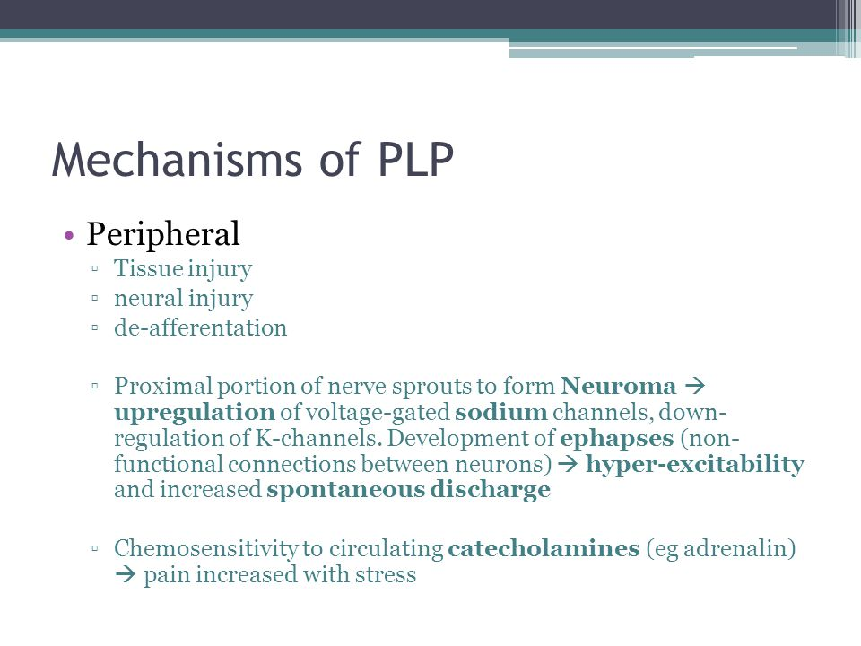 Mechanisms of PLP Peripheral ▫Tissue injury ▫neural injury ▫de-afferentation ▫Proximal portion of nerve sprouts to form Neuroma  upregulation of volt