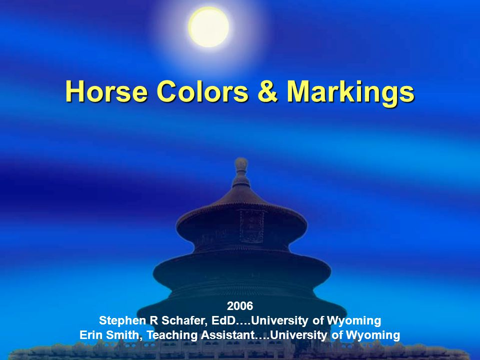 Horse Colors & Markings 2006 Stephen R Schafer, EdD….University of Wyoming Erin Smith, Teaching Assistant….University of Wyoming