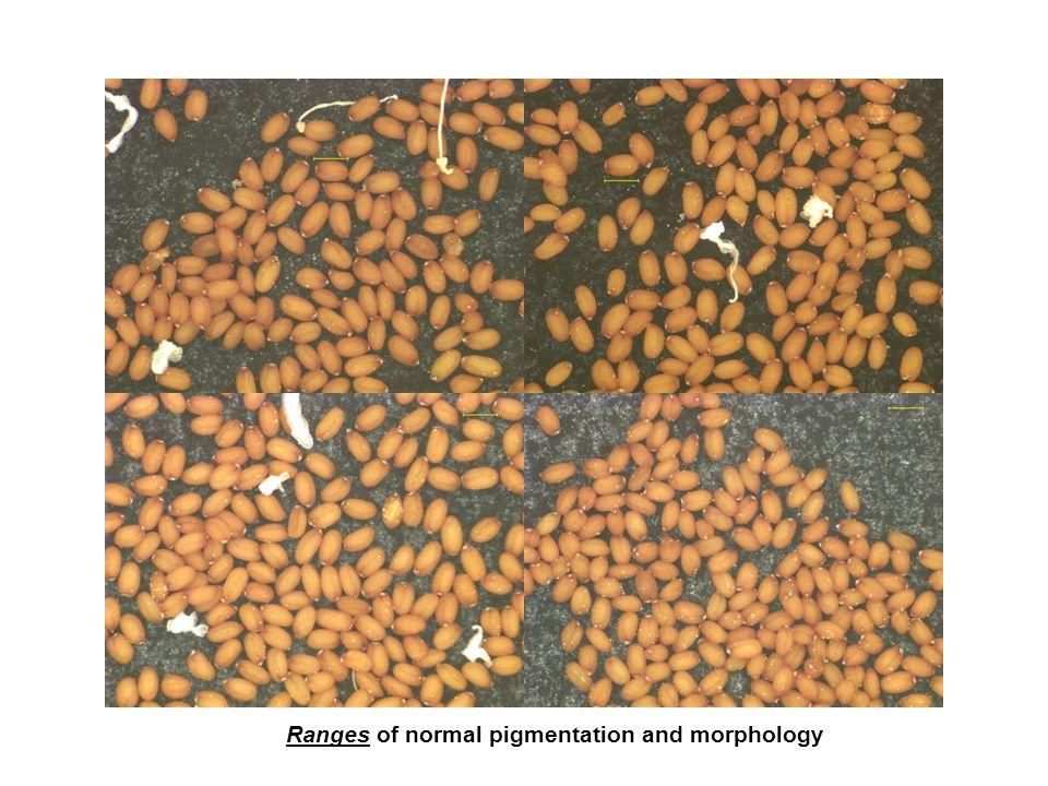 Ranges of normal pigmentation and morphology