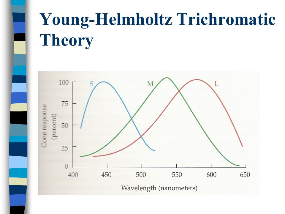 Young-Helmholtz Trichromatic Theory
