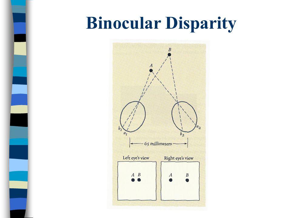 Binocular Disparity