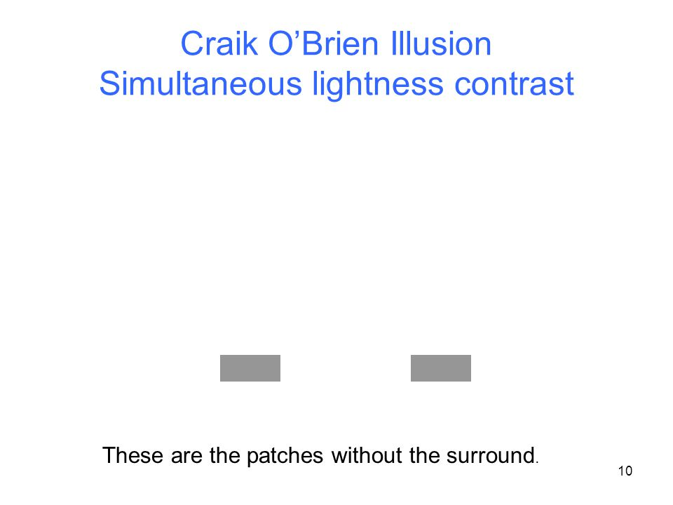 Craik O'Brien Illusion Simultaneous lightness contrast 10 These are the patches without the surround.