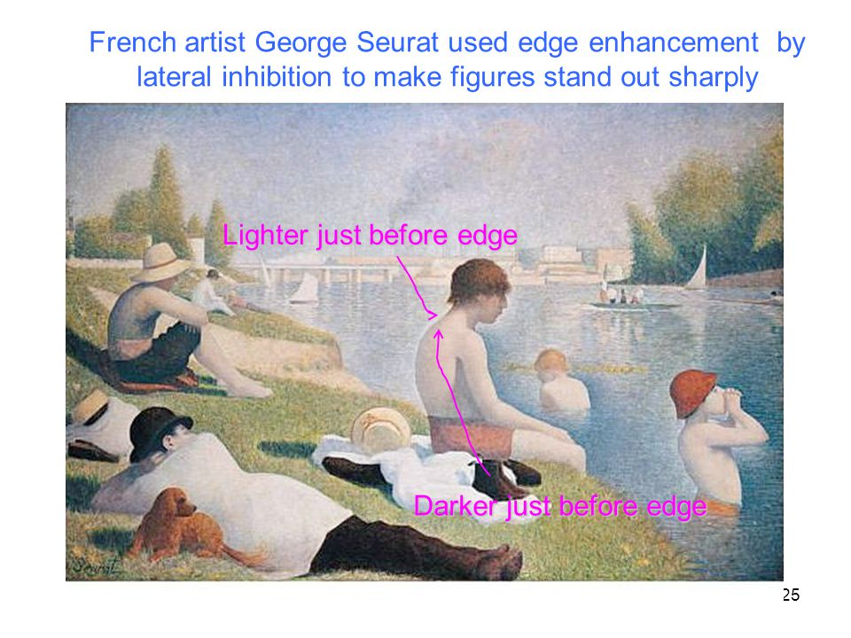 25 Lighter just before edge Darker just before edge French artist George Seurat used edge enhancement by lateral inhibition to make figures stand out sharply