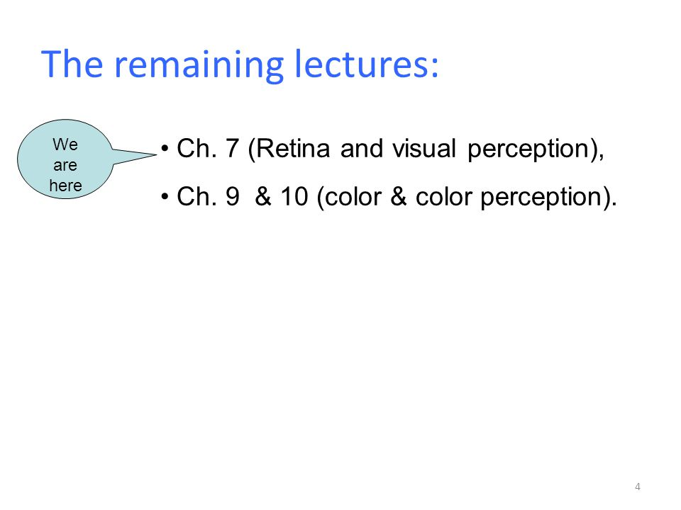 The remaining lectures: 4 Ch. 7 (Retina and visual perception), Ch.