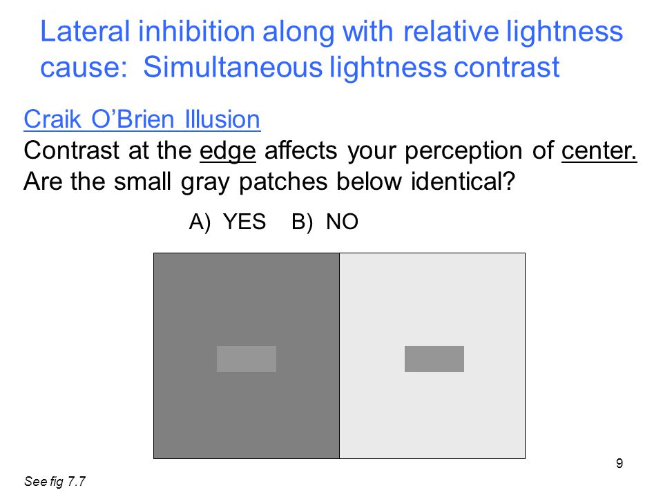 Lateral inhibition along with relative lightness cause: Simultaneous lightness contrast 9 Craik O'Brien Illusion Contrast at the edge affects your perception of center.