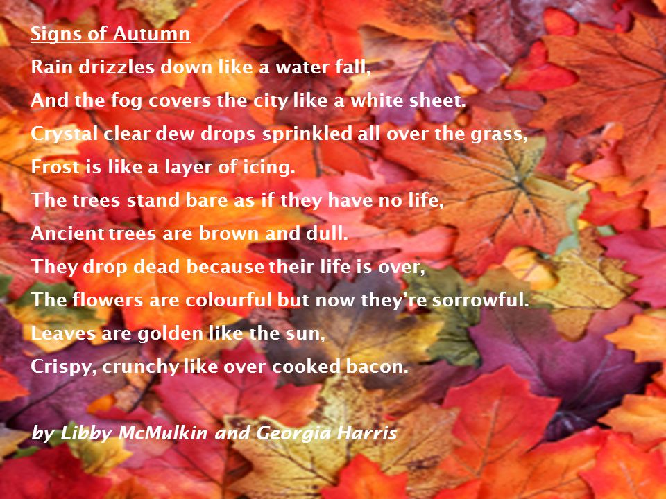 Signs of Autumn Rain drizzles down like a water fall, And the fog covers the city like a white sheet.