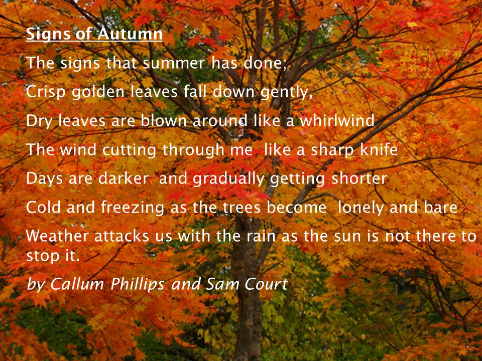 Signs of Autumn The signs that summer has done; Crisp golden leaves fall down gently, Dry leaves are blown around like a whirlwind The wind cutting through me like a sharp knife Days are darker and gradually getting shorter Cold and freezing as the trees become lonely and bare Weather attacks us with the rain as the sun is not there to stop it.