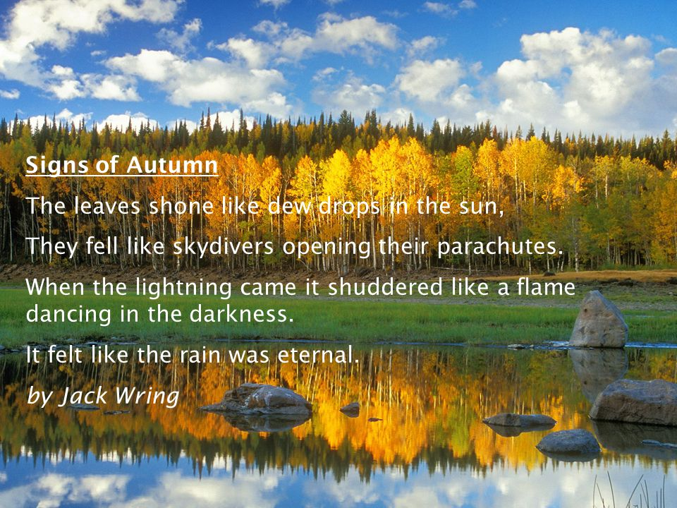Signs of Autumn The leaves shone like dew drops in the sun, They fell like skydivers opening their parachutes.