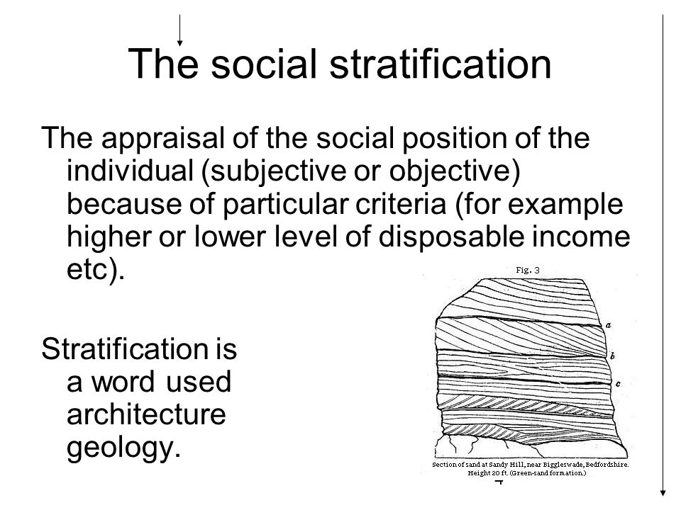 5 Inequalities: those differences which have resulted in the valuation of social position (higher or lower, better or worse).