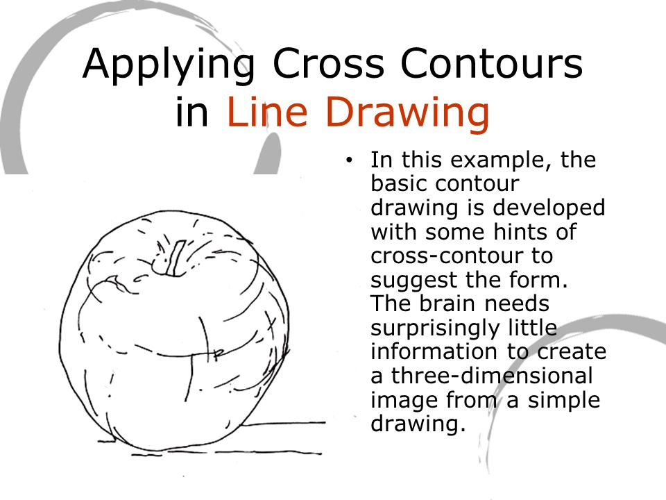 Applying Cross Contours in Line Drawing In this example, the basic contour drawing is developed with some hints of cross-contour to suggest the form.