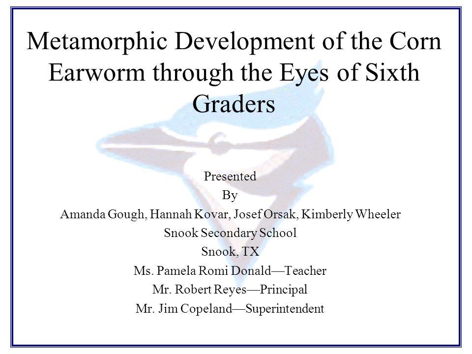 Metamorphic Development of the Corn Earworm through the Eyes of Sixth Graders Presented By Amanda Gough, Hannah Kovar, Josef Orsak, Kimberly Wheeler Snook Secondary School Snook, TX Ms.