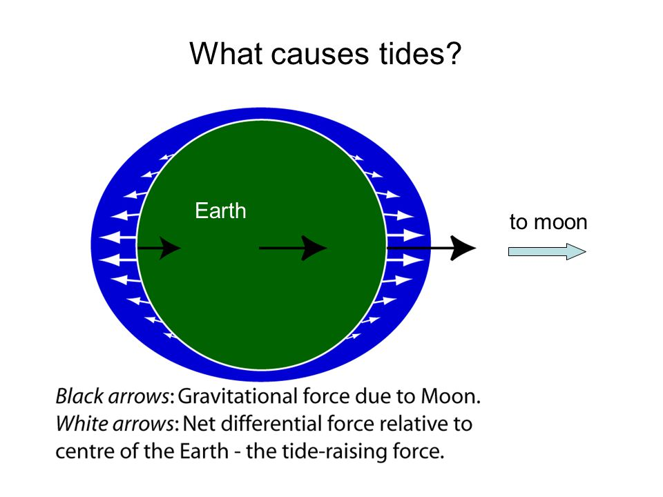 What causes tides to moon Earth