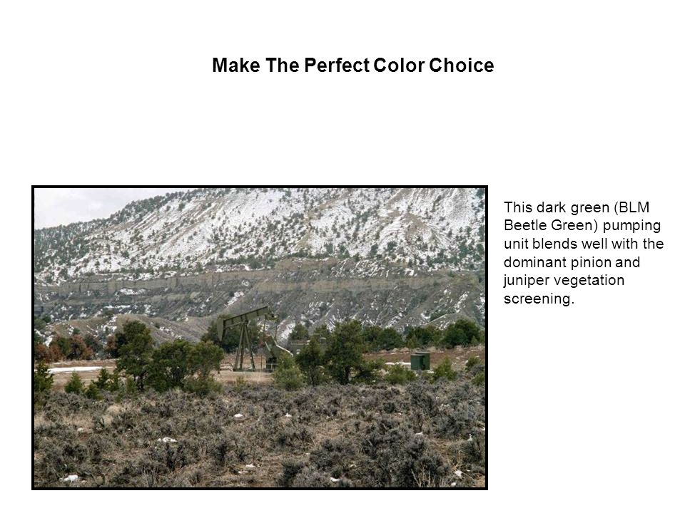 A Choice of Colors Compare Covert Green on the left to standard Desert Brown on the right. 