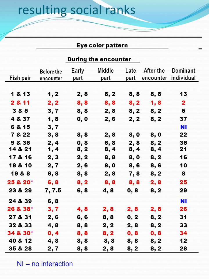 Eye color patterns before and during the interaction and the resulting social ranks Fish pair Eye color pattern Before the encounter During the encounter After the encounter Dominant individual Early part Middle part Late part 1 & 131, 22, 88, 28, 8 13 2 & 112, 28, 8 8, 21, 82 3 & 53, 78, 82, 88, 2 5 4 & 371, 80, 02, 62, 28, 237 6 & 153, 7NI 7 & 223, 88, 82, 88, 0 22 9 & 362, 40, 86, 82, 88, 236 14 & 211, 48, 28, 4 21 17 & 162, 32, 28, 88, 08, 216 18 & 102, 72, 68, 08, 6 10 19 & 86, 88, 82, 87, 88, 28 25 & 20*6, 88, 28, 8 2, 825 23 & 297, 7.56, 84, 80, 88, 229 24 & 396, 8NI 26 & 38*3, 74, 82, 8 26 27 & 312, 66, 68, 80, 28, 231 32 & 334, 88, 82, 22, 88, 233 34 & 30*0, 48, 88, 20, 8 34 40 & 124, 88, 8 8, 212 35 & 282, 78, 82, 88, 2 28 NI – no interaction