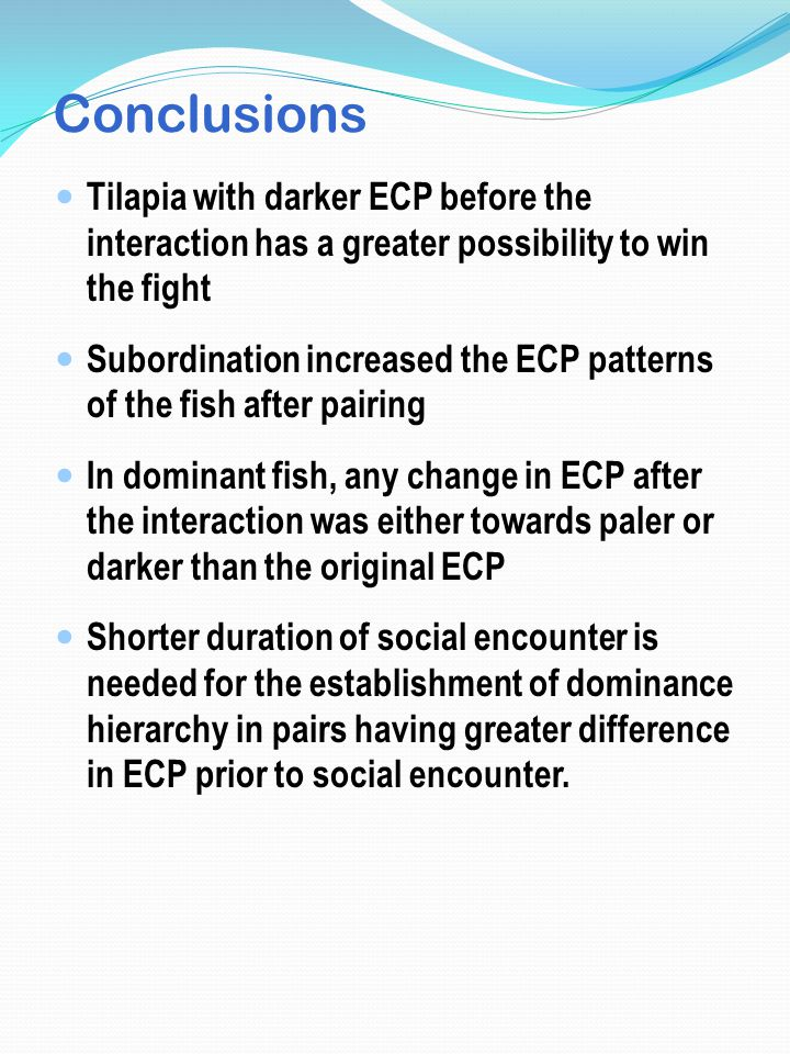 Conclusions Tilapia with darker ECP before the interaction has a greater possibility to win the fight Subordination increased the ECP patterns of the fish after pairing In dominant fish, any change in ECP after the interaction was either towards paler or darker than the original ECP Shorter duration of social encounter is needed for the establishment of dominance hierarchy in pairs having greater difference in ECP prior to social encounter.
