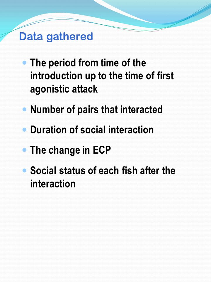 Data gathered The period from time of the introduction up to the time of first agonistic attack Number of pairs that interacted Duration of social interaction The change in ECP Social status of each fish after the interaction