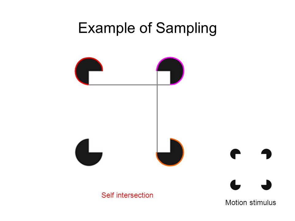 Example of Sampling Motion stimulus Self intersection