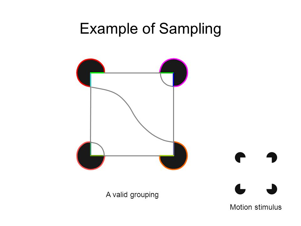 Example of Sampling Motion stimulus A valid grouping