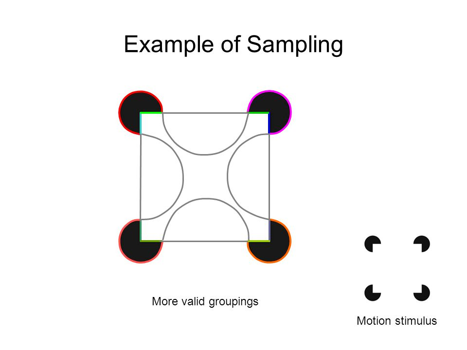 Example of Sampling Motion stimulus More valid groupings