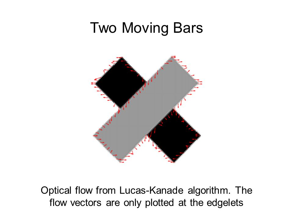 Optical flow from Lucas-Kanade algorithm.