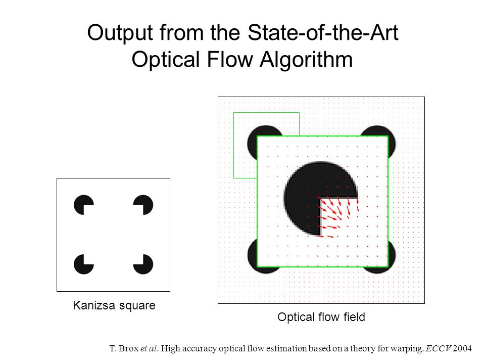 Output from the State-of-the-Art Optical Flow Algorithm T.