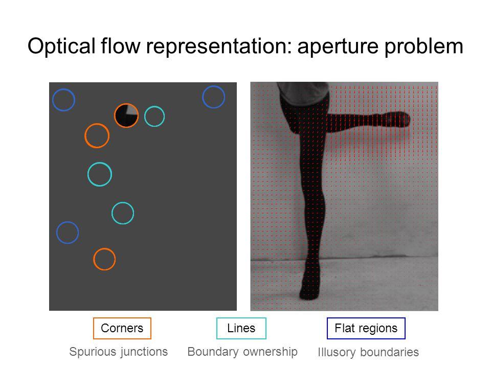 Optical Flow Representation Corners Lines Flat regions Spurious junctionsBoundary ownership Illusory boundaries We need motion representation beyond pixel level!
