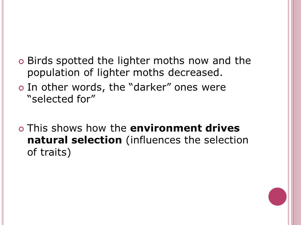 "Birds spotted the lighter moths now and the population of lighter moths decreased. In other words, the ""darker"" ones were ""selected for"" This shows ho"
