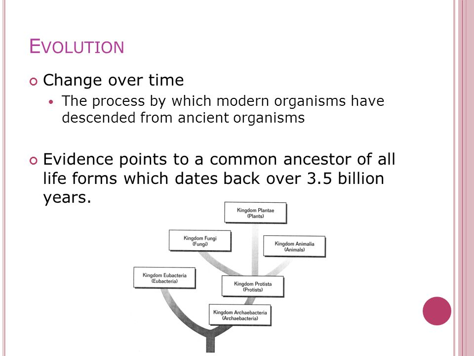 E VOLUTION Change over time The process by which modern organisms have descended from ancient organisms Evidence points to a common ancestor of all life forms which dates back over 3.5 billion years.