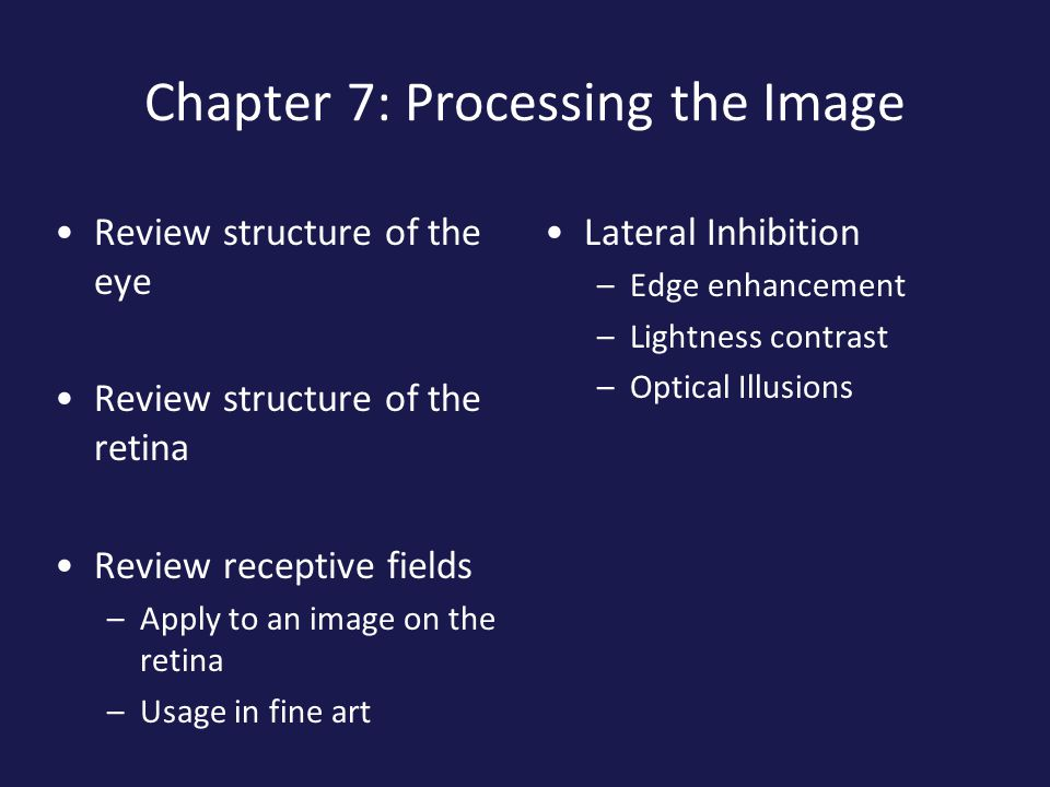 The Human Visual System The photoreceptors turn light into electrical signals The nerve cells in the retina do some low level image processing Then transmit the signal to the optic nerve and the brain