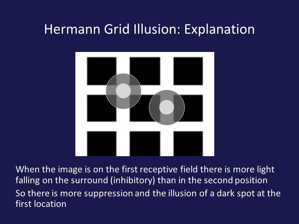 Hermann Grid Illusion: Explanation When the image is on the first receptive field there is more light falling on the surround (inhibitory) than in the second position So there is more suppression and the illusion of a dark spot at the first location