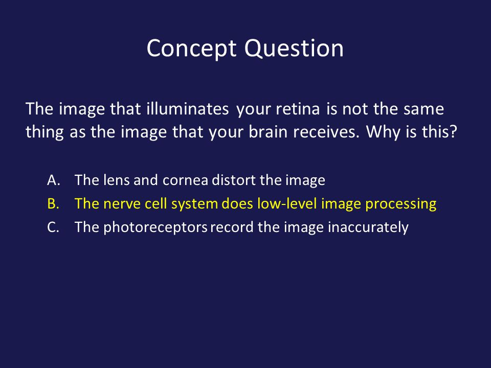 Concept Question The image that illuminates your retina is not the same thing as the image that your brain receives. Why is this? A.The lens and corne