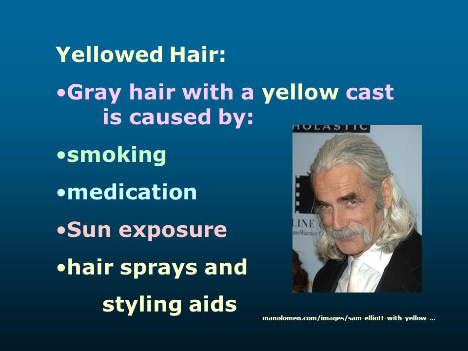 Yellowed Hair: Gray hair with a yellow cast is caused by: smoking medication Sun exposure hair sprays and styling aids manolomen.com/images/sam-elliot