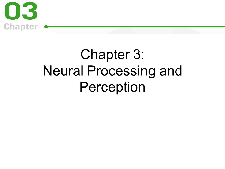 Chapter 3: Neural Processing and Perception