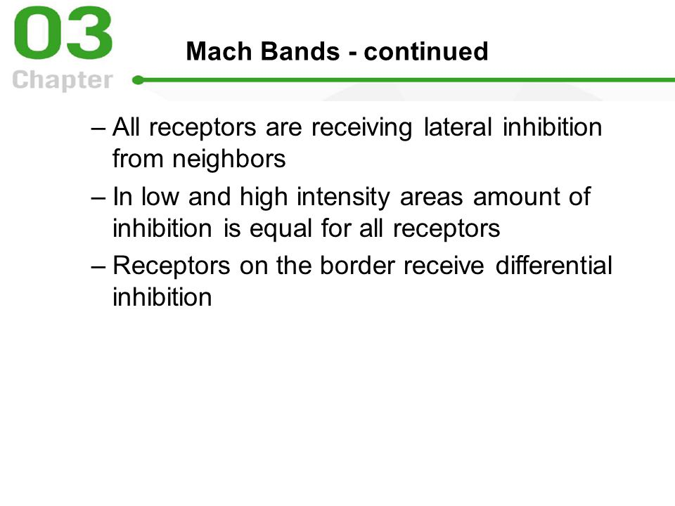 Mach Bands - continued –All receptors are receiving lateral inhibition from neighbors –In low and high intensity areas amount of inhibition is equal for all receptors –Receptors on the border receive differential inhibition
