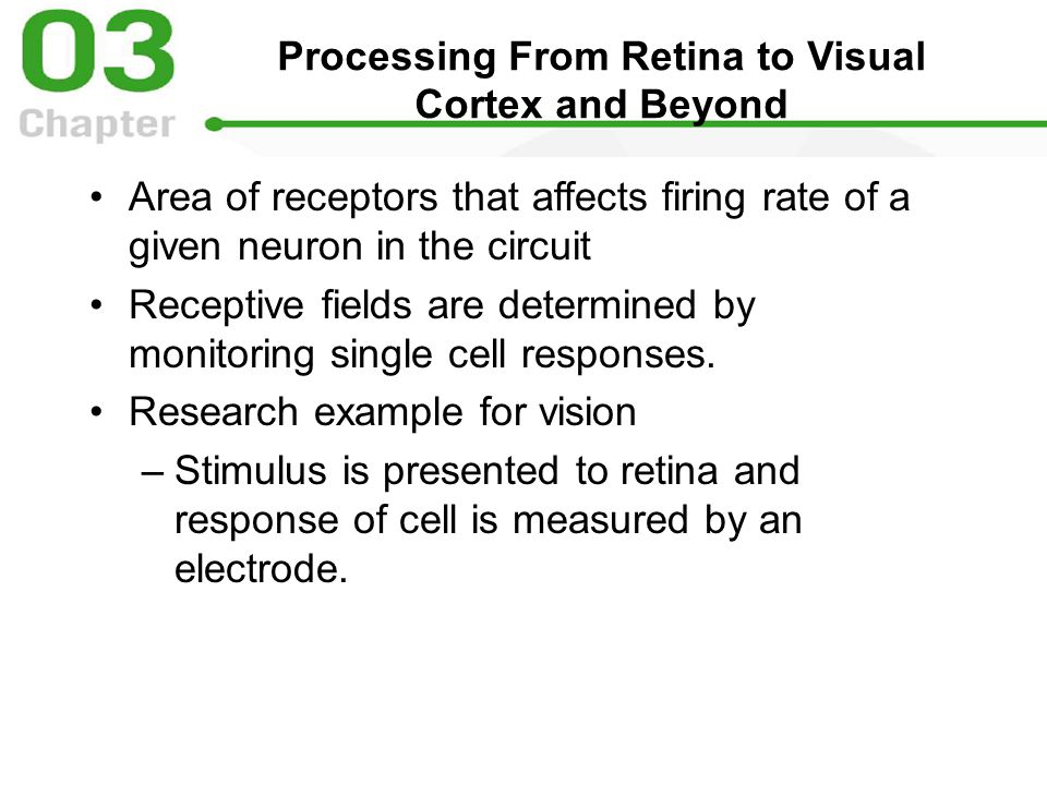 Processing From Retina to Visual Cortex and Beyond Area of receptors that affects firing rate of a given neuron in the circuit Receptive fields are determined by monitoring single cell responses.