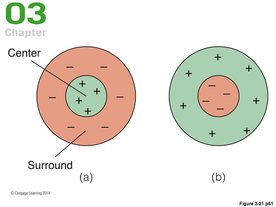 Figure 3-21 p61