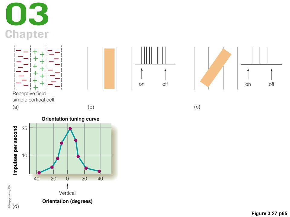 Figure 3-27 p65