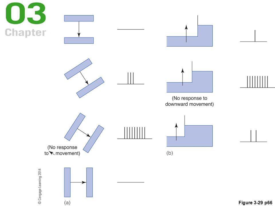 Figure 3-29 p66