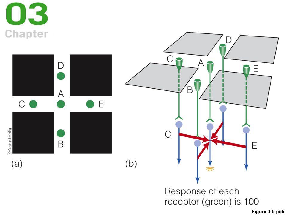 Figure 3-5 p55