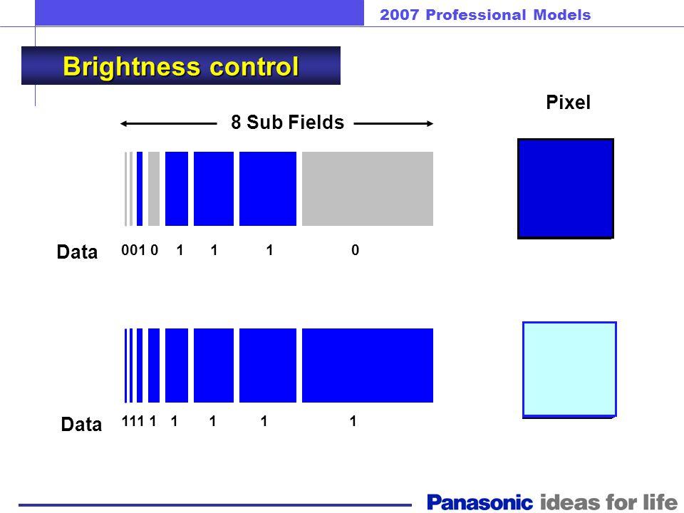 2007 Professional Models Sub-field Drive System 1 field (16.67msec) Sub-field No.