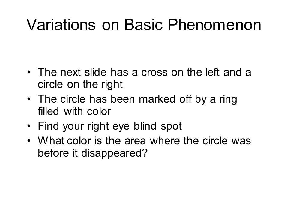 Variations on Basic Phenomenon The next slide has a cross on the left and a circle on the right The circle has been marked off by a ring filled with color Find your right eye blind spot What color is the area where the circle was before it disappeared?