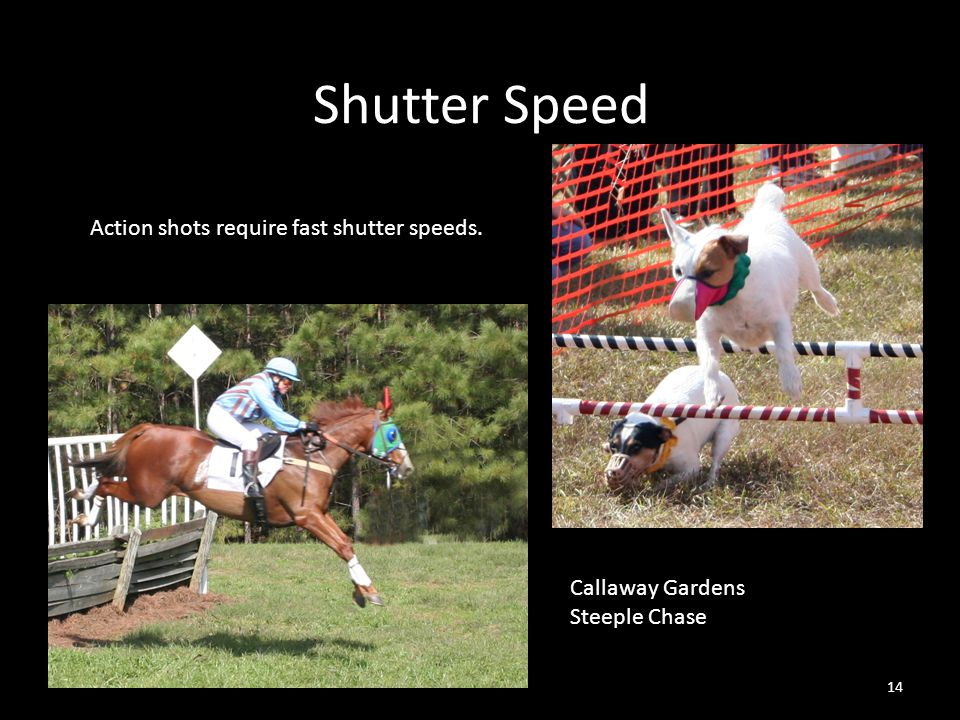 Shutter Speed 14 Callaway Gardens Steeple Chase Action shots require fast shutter speeds.