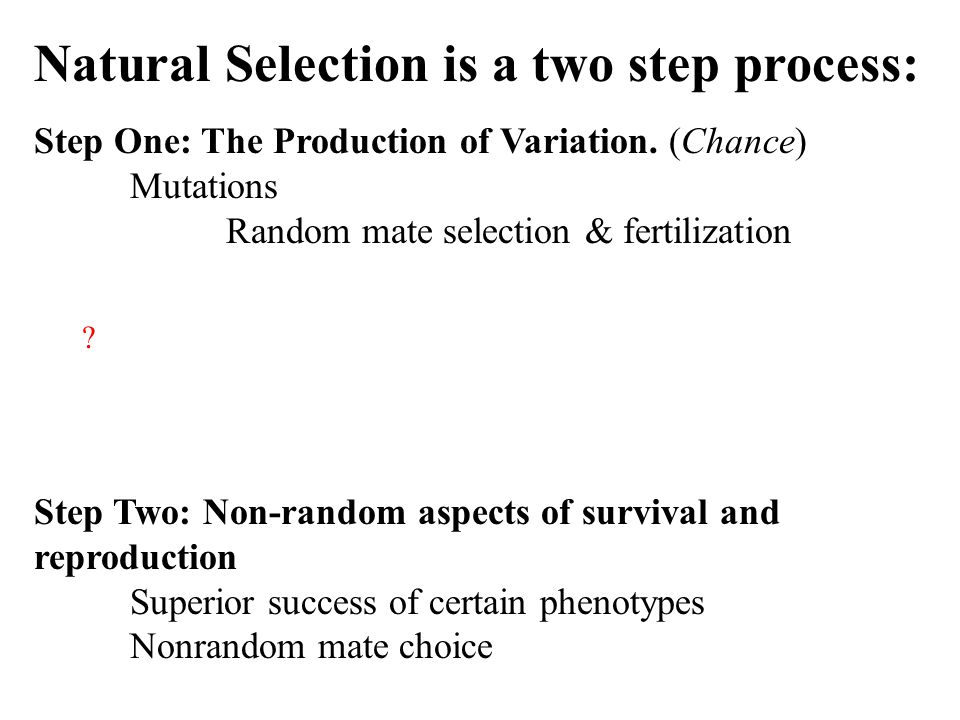 Natural Selection is a two step process: Step One: The Production of Variation.