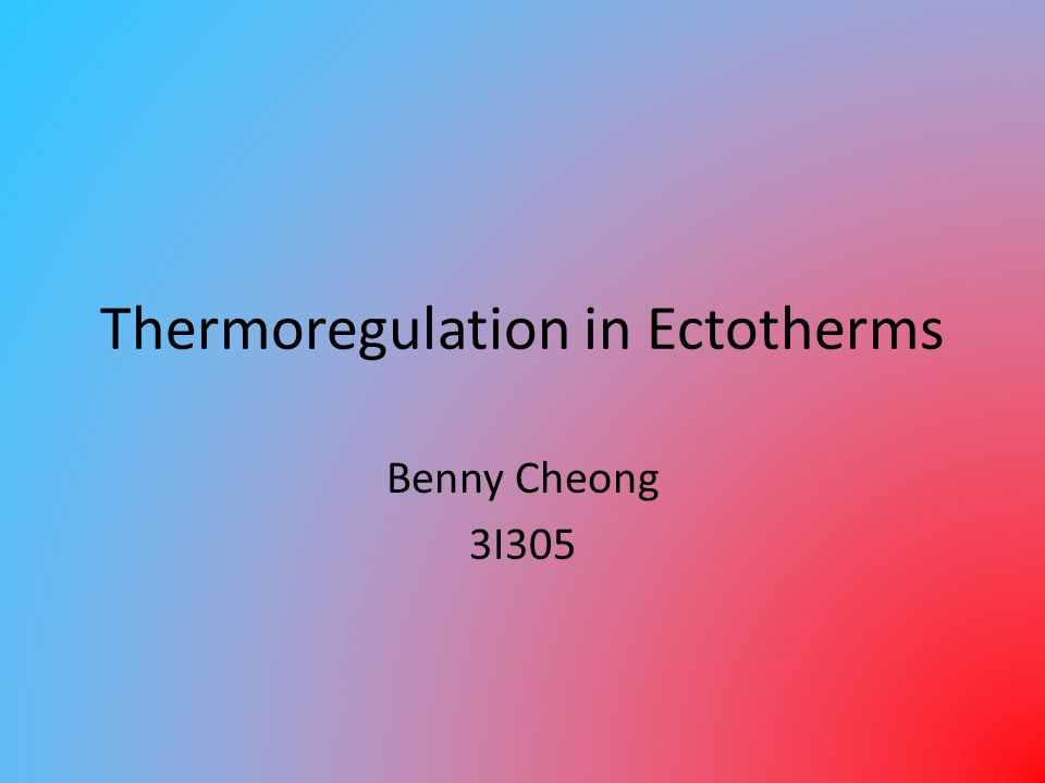 Thermoregulation in Ectotherms Benny Cheong 3I305