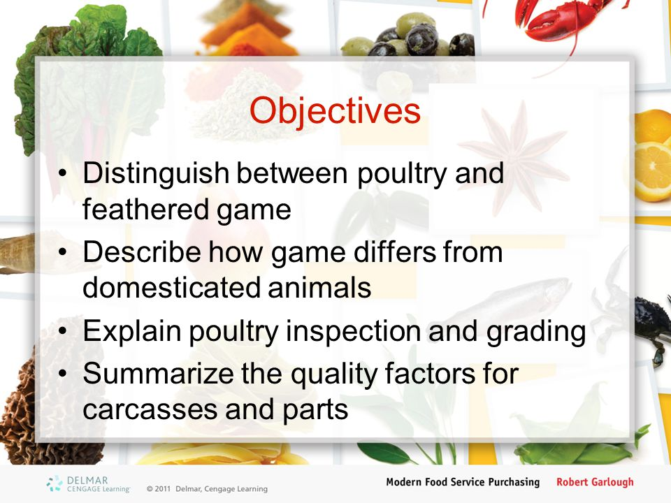 Objectives (cont'd.) Outline the different categories of chicken List several species of furred and feathered game Differentiate between hare and rabbit