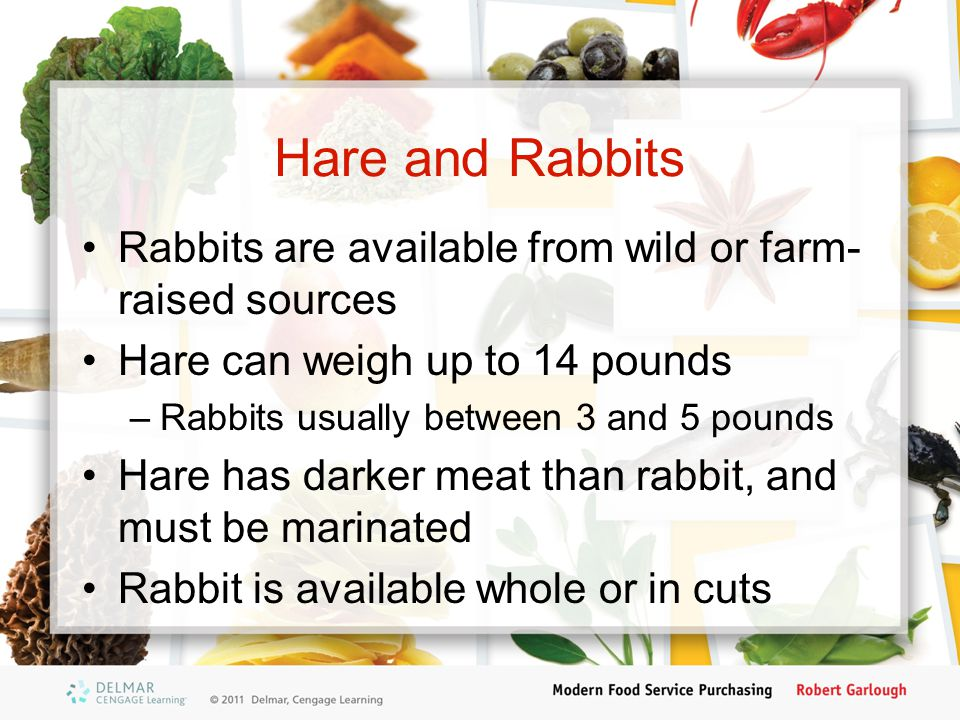 Hare and Rabbits Rabbits are available from wild or farm- raised sources Hare can weigh up to 14 pounds –Rabbits usually between 3 and 5 pounds Hare h